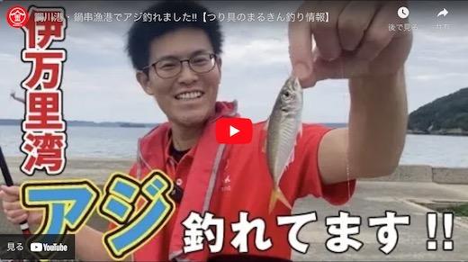 動画釣り情報